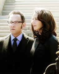 Finch & Root